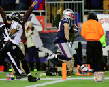 Danny Amendola Touchdown Catch 2014 Playoff Action Photo
