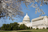 Capitol Building in Spring - Washington DC Prints by  Orhan
