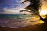 Sunrise at Lanikai Beach in Hawaii Fotografisk tryk af  tomasfoto