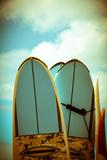 Vintage Surf Boards Fotodruck von Mr Doomits