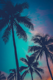 Retro Sunset Hawaii Palm Trees Photographic Print by Mr Doomits