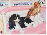 Daphne and Gemma, 2009 Stretched Canvas Print by Billy Sullivan