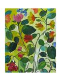 Morea Garden Giclee Print by Kim Parker