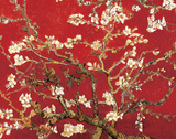 Almond Blossom - Red Prints by Claude Monet