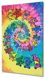 The Grateful Dead - Spiral Bears Reprodukce na plátně