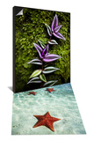 Green and Purple Leafs Grow Along Mossy Tree & Paradise and Seclusion Set - Poster