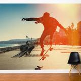 Skate Jump Wall Mural