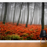 Red Bed Wall Mural