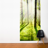 Divine Light Wall Mural