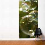 Soap Bubbles Wall Mural