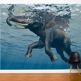 Under Water Wall Mural