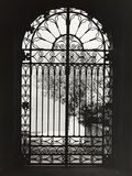 Iron Gate of the City Hall of Malcesine Photographic Print by Otto Zenker