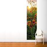 Flower at Sunrise Wall Mural