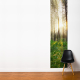 Sunbeam Wall Mural
