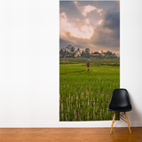Bali Rice Field Wall Mural