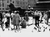 Tourists in Trafalgar Square to Feed the Pigeons, London Photographic Print by Dusan Stanimirovitch