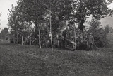 First World War: Soldiers and Tanks Hidden in the Bush in the Area of the Lower Piave Photographic Print