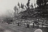 World War I: Cemetery of the Twelfth Division Photographic Print