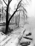 Along the Seine in Paris Photographic Print by Dusan Stanimirovitch