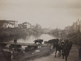 Pictures of War II: Italian Soldiers and Horses Crossing a Temporary Bridge after a Bombing Photographic Print