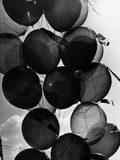 Baloons Photographic Print by Dusan Stanimirovitch