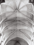 The Sails of the Ceiling of the Church of Saint-Madeleine in Vezelay Photographic Print by Dusan Stanimirovitch