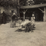 WWI: Inhabitants of Soleschiano with a Sow Photographic Print
