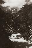 Janolih Mount Photographic Print