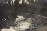 World War I: Steel Horses Photographic Print
