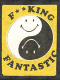 F--king Fantastic Wall Decal by  Junk Food