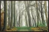Magic Is Everywhere Framed Canvas Print by Lars Van de Goor