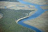 Aerial View of Marine Forest and River Photographic Print by Wollwerth Imagery