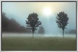 Two Trees & Sunburst Framed Canvas Print by Monte Nagler