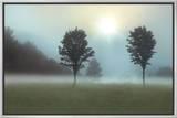 Two Trees & Sunburst 額入りキャンバスプリント : モンテ・ナグラー