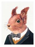 Squirrel Plakater af Animal Crew