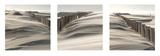 Sand, Wind Print by Georges-Félix Cohen