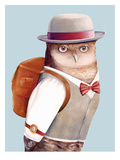 Gufo|Owl Stampe di  Animal Crew