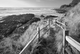 Pathway to Beach Photographic Print by Dennis Frates