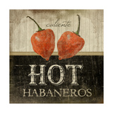 Hot Habaneros Poster by Jennifer Pugh