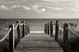 Paradise Photographic Print by Dennis Frates