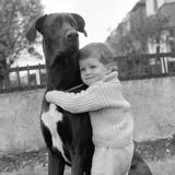 A Child with dog Obrazy