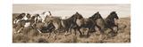 Wild Horses Art by Claude Steelman