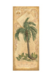 Palm Fronds II Posters by Anita Phillips