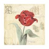 Tulip Gem I Prints by Jo Moulton