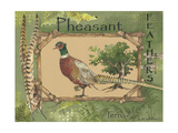 Pheasant Posters by Anita Phillips