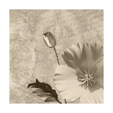 Vintage Rose I Prints by Lisa Wolk