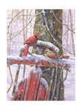 Red Sled with Cardinals Posters par Donna Race