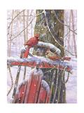 Red Sled with Cardinals Schilderij van Donna Race