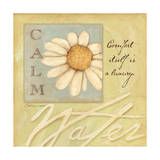 Calm, Daisy Art by Stephanie Marrott