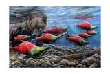Salmon Poster by Kevin Daniel